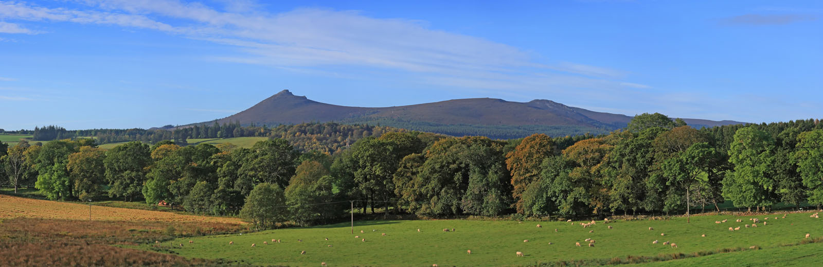 BENN015 : Bennachie from Whiteford