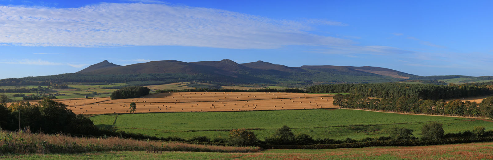 BENN016 : Bennachie from Strathorn